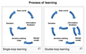 double loop learning